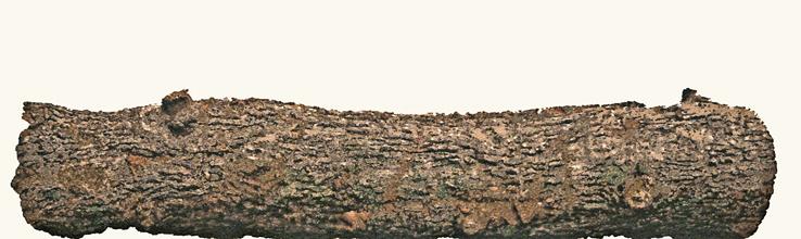 Acryl auf Baumwolle, 90 x 300 cm